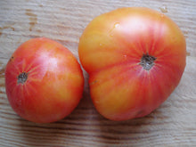 Load image into Gallery viewer, Tomato, Hillbilly
