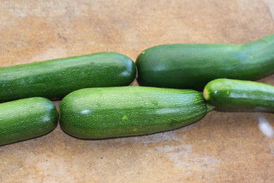Zucchini, Black Beauty