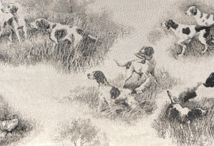 Hunting Dogs Hunting Dogs