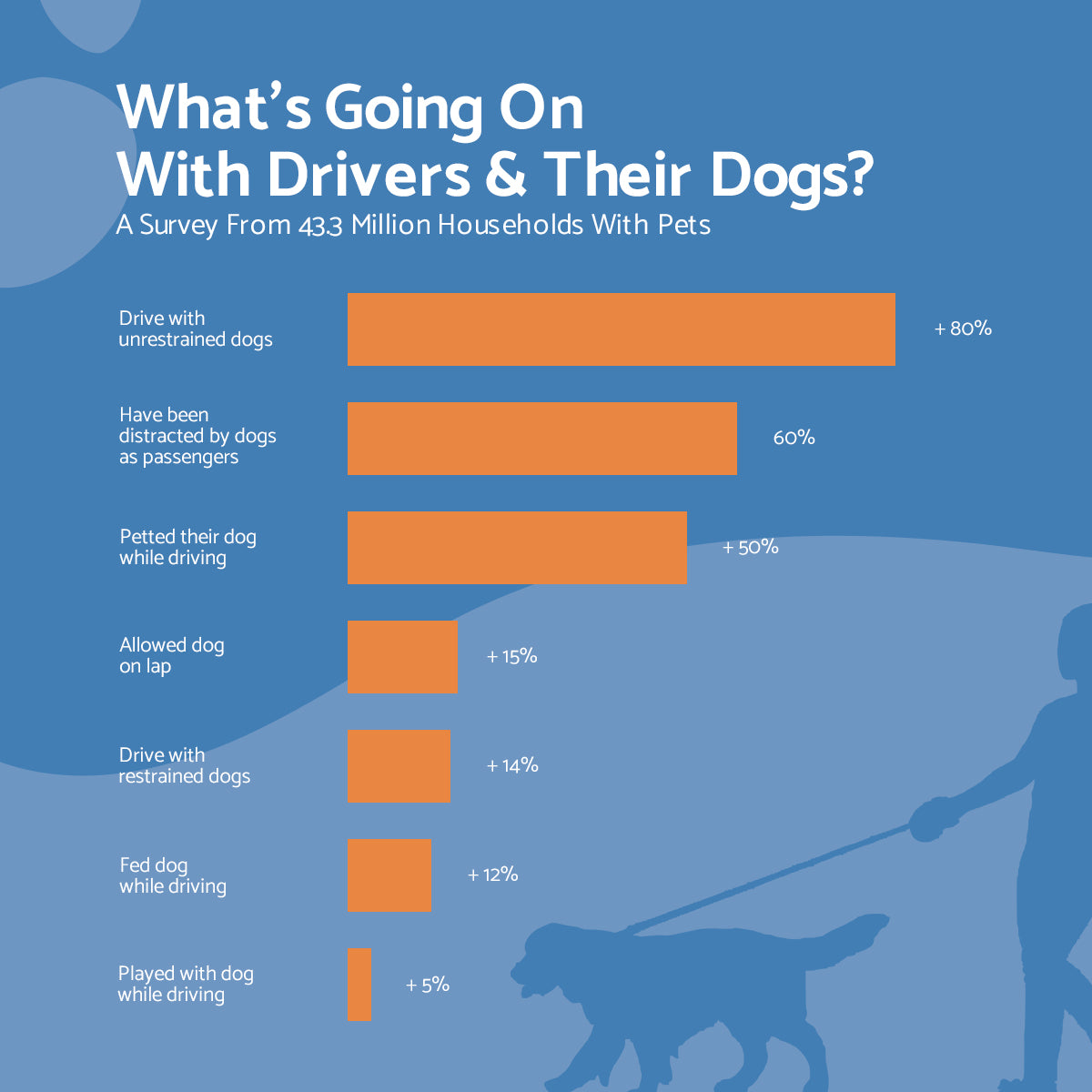 dogs-while-driving-statistic