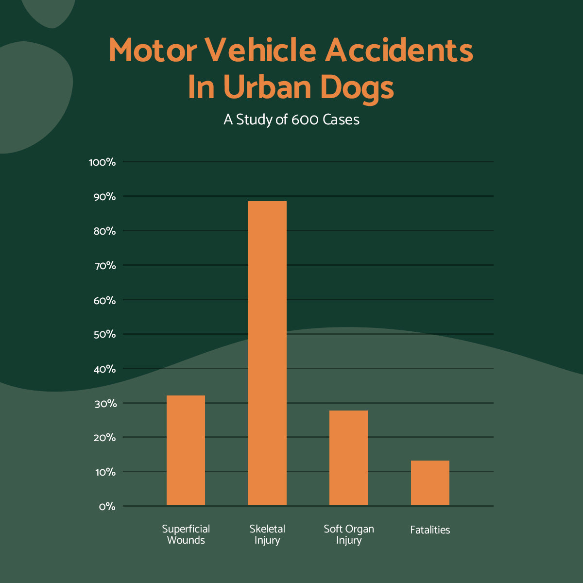 motor vehicle accidents in urban dogs