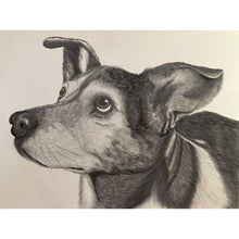 Load image into Gallery viewer, 8 x 10 Custom Pet Portrait