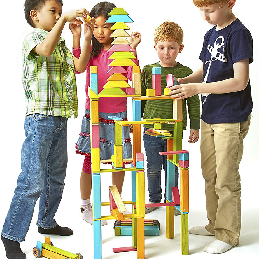 Tegu 14-Piece Set Magnetic Wooden Blocks Classics - Tints