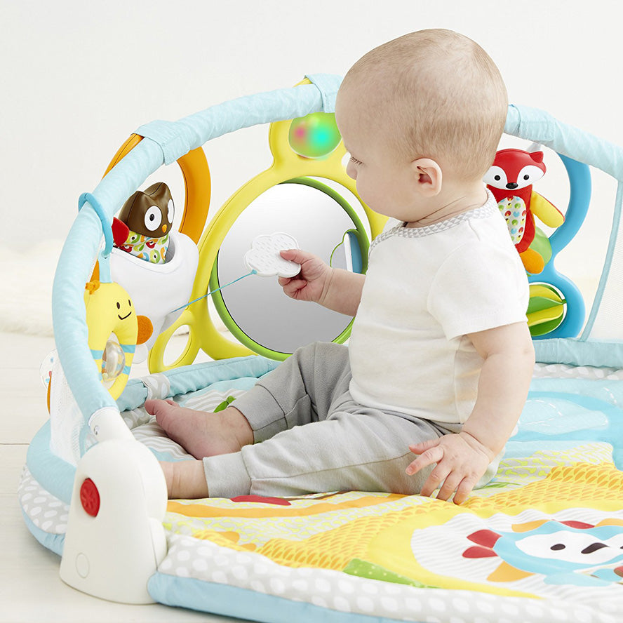Skip Hop Amazing Arch Baby Activity Gym