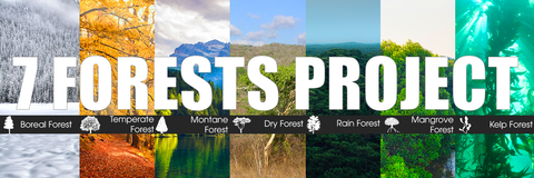 The 7 forests project: Boreal, temperate, montane, dry forest, rain forest, mangrove and kelp forest