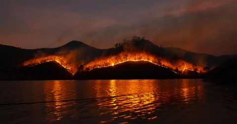 Hill forest burning