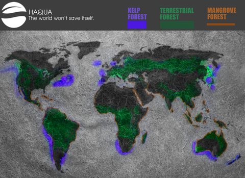 World map with Terrestrial forest cover, Mangrove forest and kelp forest highlighted