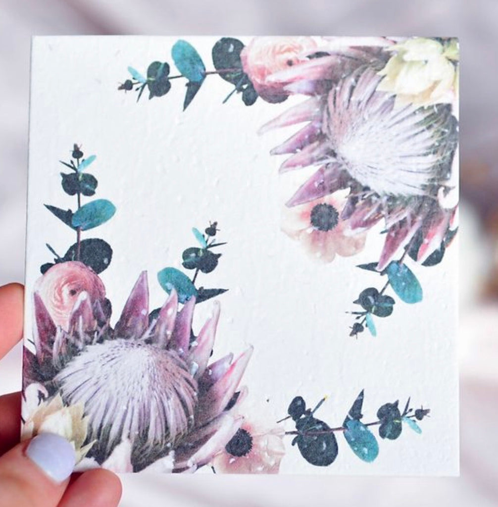 Plantable Greeting Card - Protea