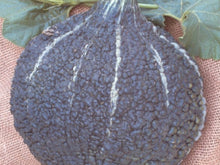 CHICAGO WARTED HUBBARD SQUASH