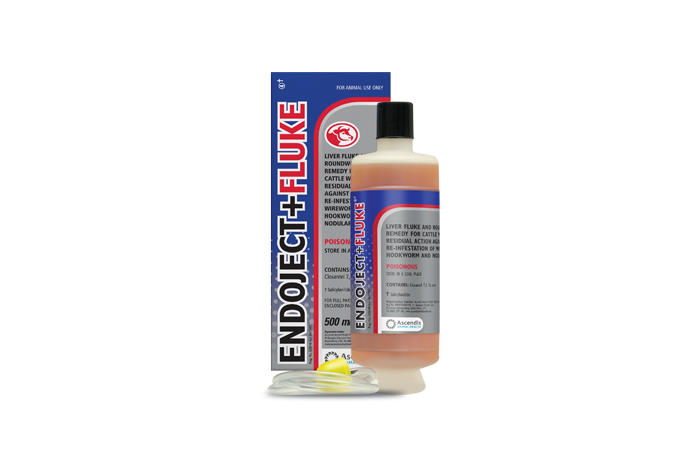 Endoject + Fluke 500ml