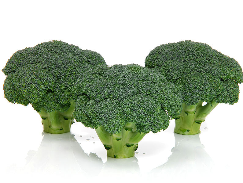 ARES* F1 HYBRID BROCCOLI (Prices From)
