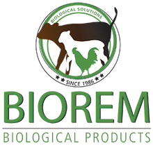 Biorem (Prices From)