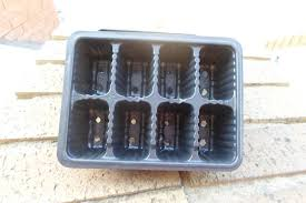8 Cavity Seedling Tray