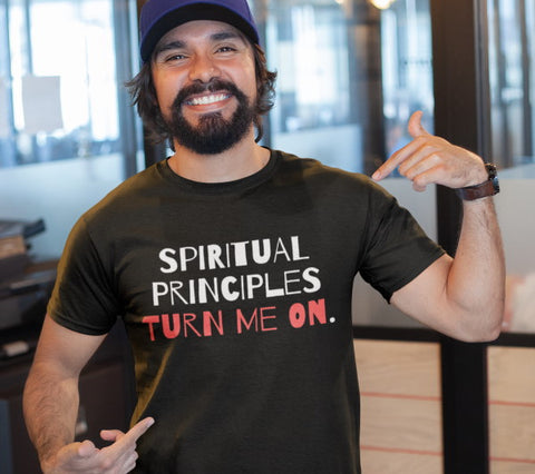 12-step Spiritual Principles turn me on