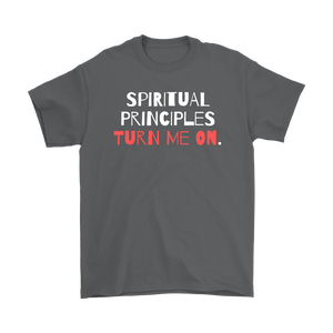 """Spiritual Principles Turn Me On."" Unisex Recovery-Theme Tee - Gray"