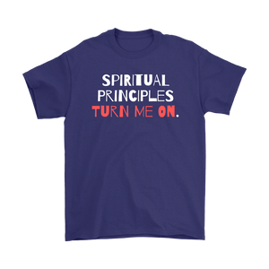 """Spiritual Principles Turn Me On."" Unisex Recovery-Theme Tee - Purple"