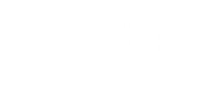 Jubilee Computer Services