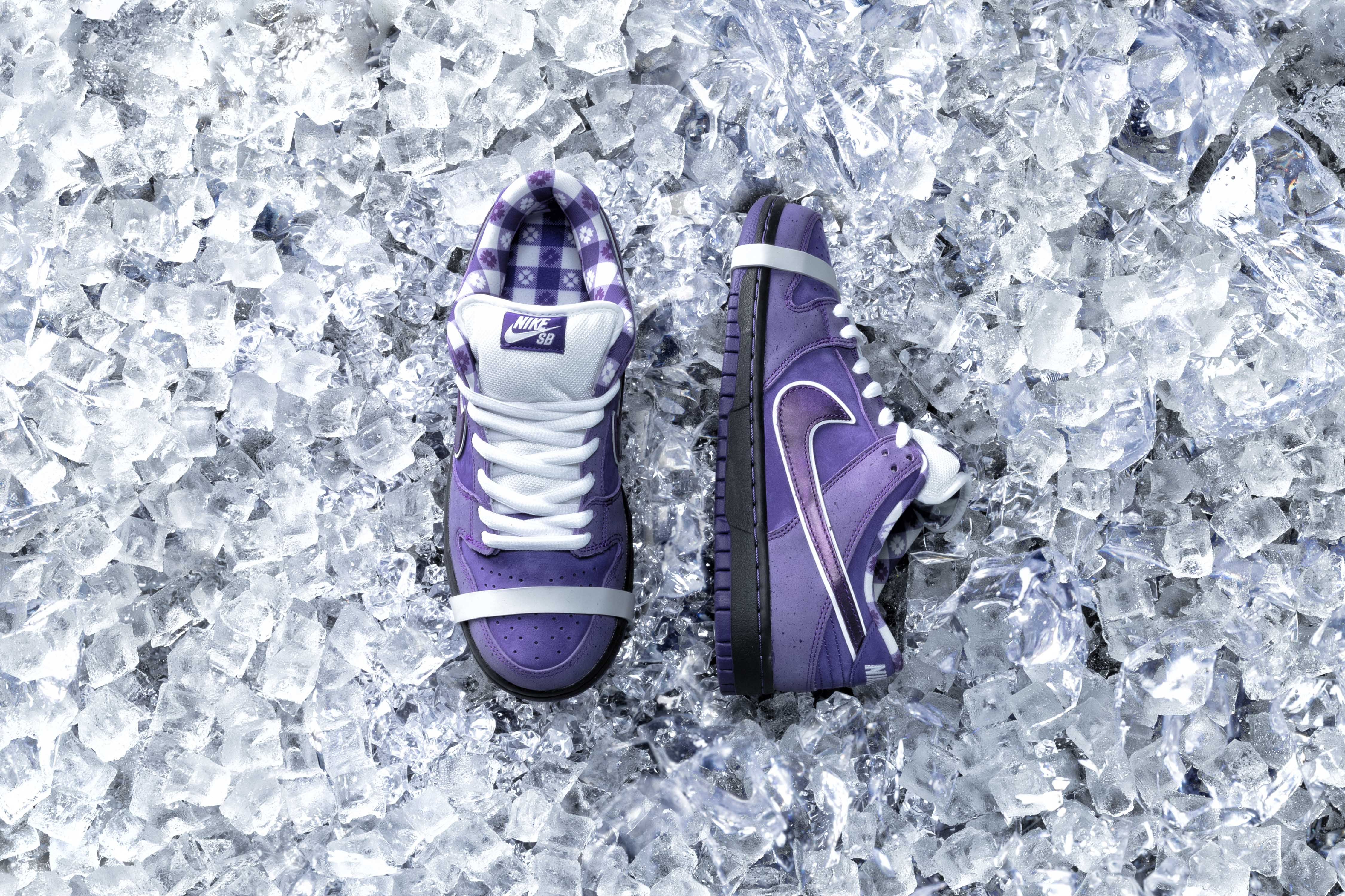 Concepts X Nike Dunk Low Pro \