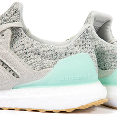 adidas Women's UltraBOOST (Clear Mint/Raw White/Carbon)
