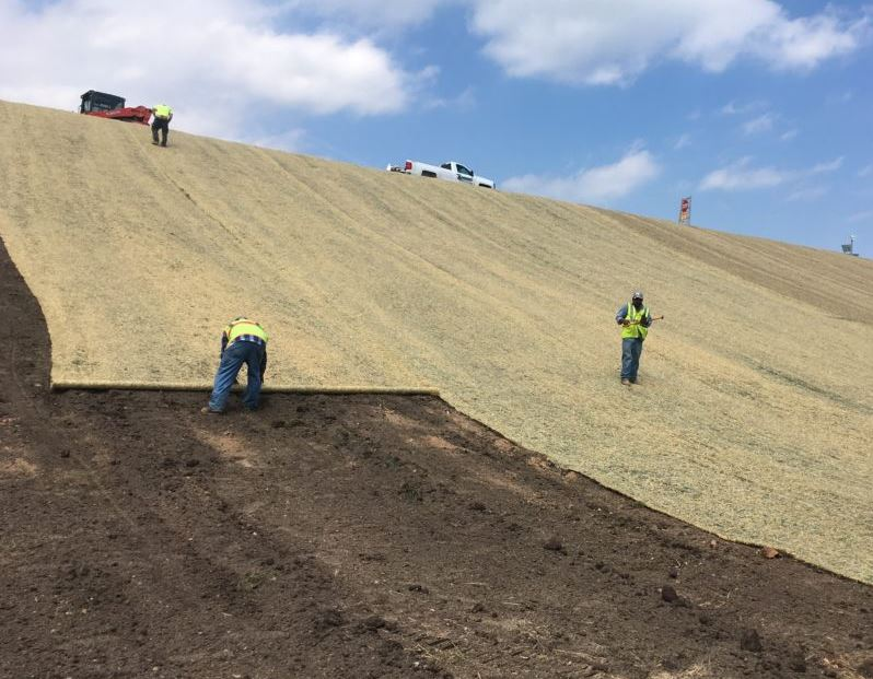 Excelsior Single Net - Erosion Control Blanket