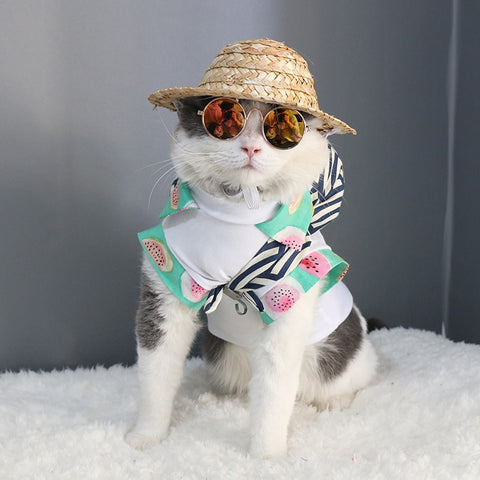 Cat Eye-wear Pet Sunglasses Little Dog Glasses Cat Glasses Photos Props Dog cat Accessories Pet Supplies For Pet Products
