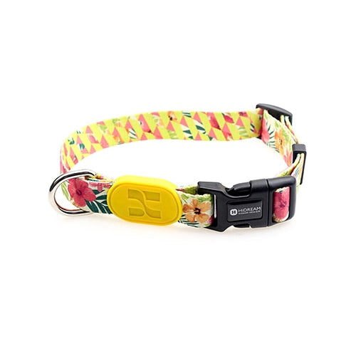 Dog Collar Breakaway Quick Release High Quality For Pet Puppy 9 Colors  Sunshine California Series Colorful Fashion New Design