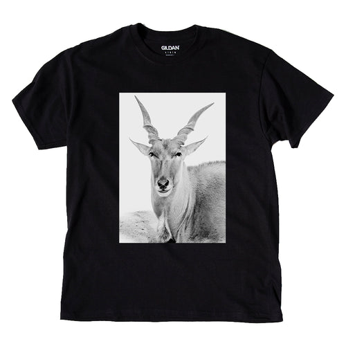 African Eland Animal Photo Print Adult T-Shirt Top Black