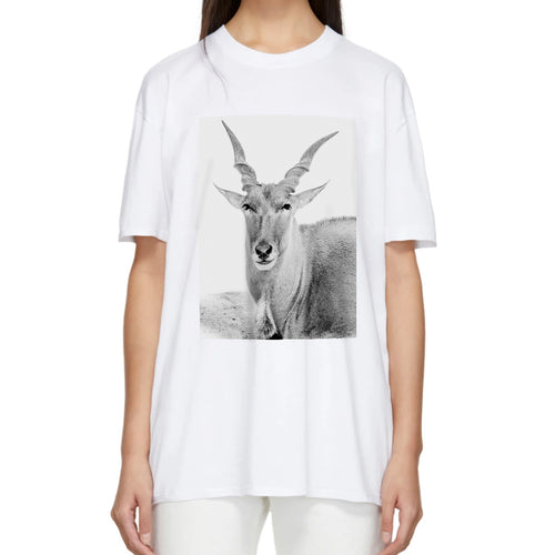 African Eland Animal Photo Print Adult T-Shirt Top White
