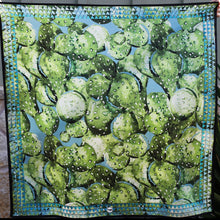 Load image into Gallery viewer, Scarf ~ Prickly Pear ~ Long Tall