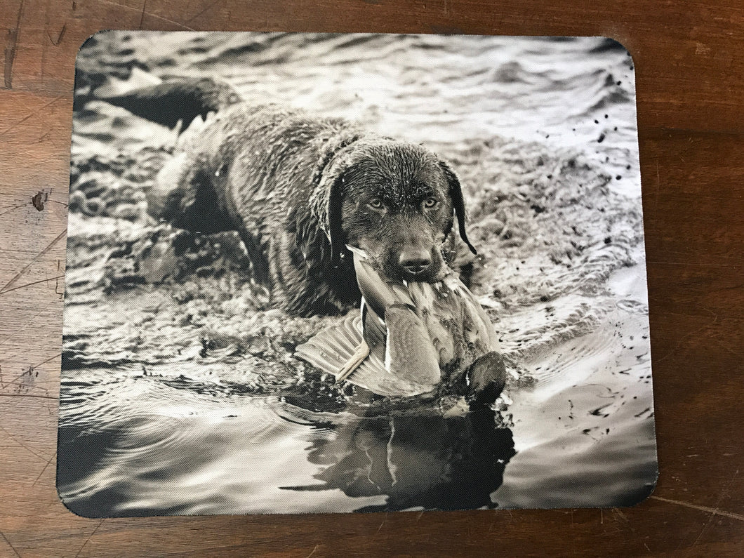 Retrieving ~ Mouse Pad