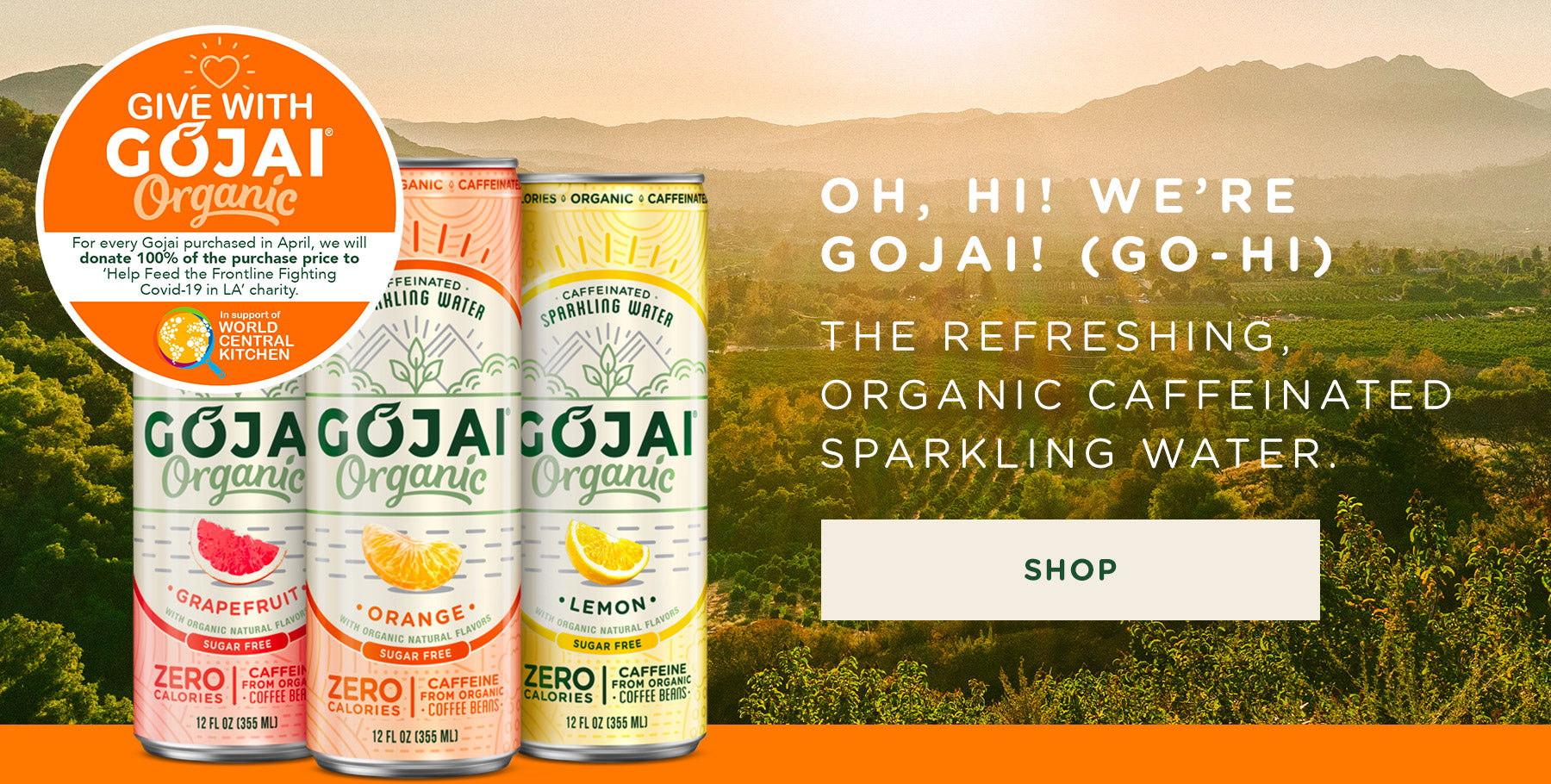 Oh hi we're Gojai the refreshing, organic caffeinated, sparkling water
