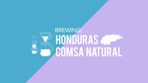 Brewing: Honduras COMSA Natural