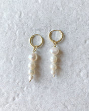Load image into Gallery viewer, GINEVRA PEARLS EARRINGS