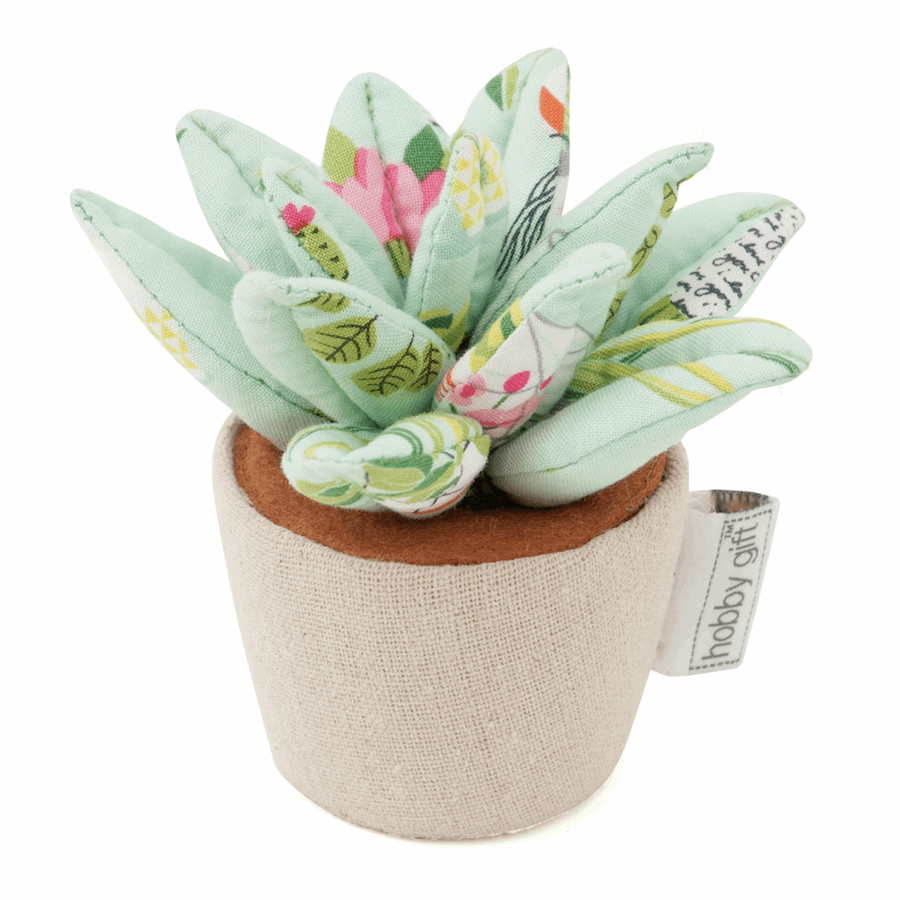 Succulent Pincushion