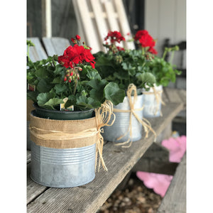 Geranium with decorated tin can planter