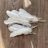 Large White Goose Feathers