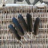 Small Black Crow Feathers