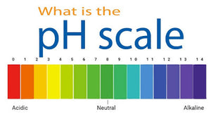 The pH of hair, skin and products (and why it matters!)