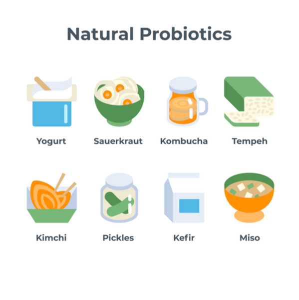natural dietary sources of probiotics