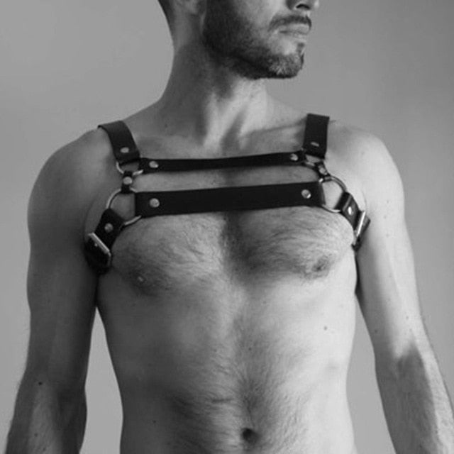 Dual Strap Leather Harness