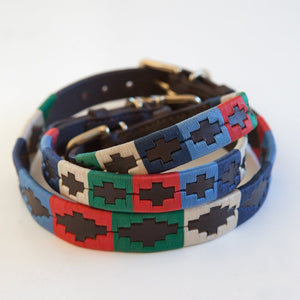 dog collar stack of different sizes multi coloured