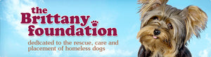The Brittany Foundation dedicated to the rescue, rehabilitation, care and placement of homeless dogs.