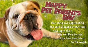 Be Sure to Celebrate National Pet Parent's Day!