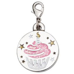 Fashion And Fun Pet Charms