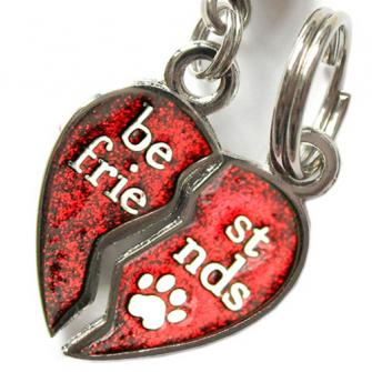 Best Friends Pet Charm