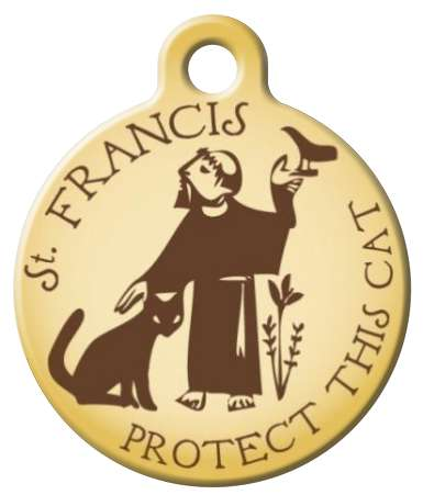 St Francis Protect this Cat id Tag