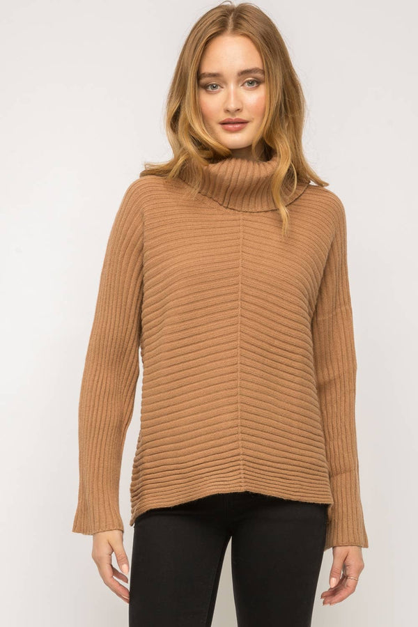 Dolman Sleeve Turtle Neck Sweater