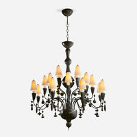 Ivy and Seed 20 Lights Chandelier - Absolute Black      6205.00  Lladro Lamps & Figurines