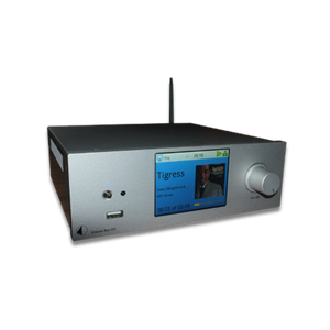 Pro-Ject Stream Box RS