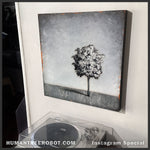 "IG-0046 - Instagram Special - Original Oil Painting - 24x24 Inch ""Shadow Tree"""